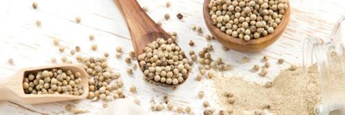 Nutrition poivre blanc de kampot